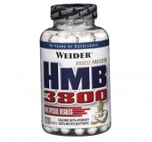 HMB 3800 120 kapslí Weider
